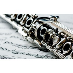 Are you looking for a basic guide to playing the clarinet?